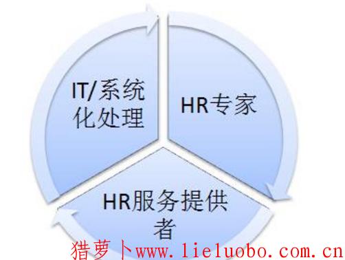 2019年的HR发展趋势有哪些?