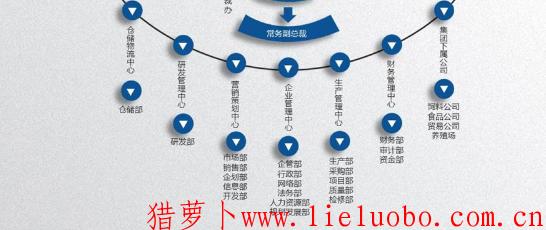 组织结构的发展历程简介介绍