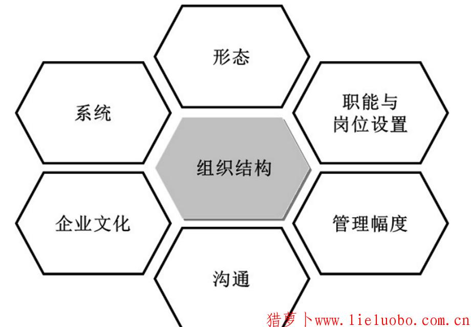 从哪几个方面评估企业的组织结构?